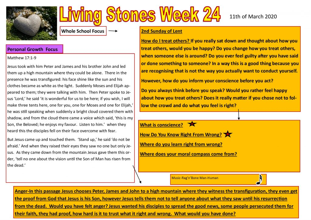 Week 24 Tutor time plan and resources